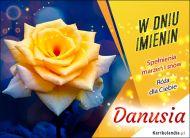 eKartki Imienne Damskie Danusia - Imieninowa róża dla Ciebie,