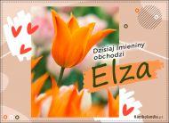 eKartki Imienne Damskie Elza - Kartka Imieninowa,