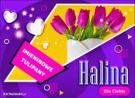 eKartki Imienne Damskie Halina - Imieninowy bukiet tulipanów,