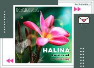 eKartki Imienne Damskie Halina - Kwiatuszek na Imieniny,