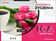 eKartki Imienne Damskie Iga - Pocztówka Imieninowa,