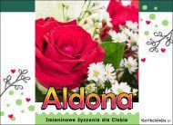 eKartki Imienne Damskie Imieninowe róże dla Aldony,