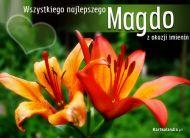 eKartki elektroniczne z tagiem: Dla Magdaleny Imieniny Magdy,