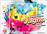 eKartki elektroniczne z tagiem: e-Kartka na imieniny Jagna - Z okazji Imienin...,