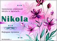 eKartki Imienne Damskie Kartka z imieniem Nikola,