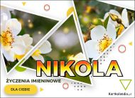 eKartki Imienne Damskie Kartka z kwiatami dla Nikoli,