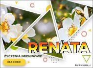 eKartki Imienne Damskie Kartka z kwiatami dla Renaty,