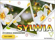 eKartki Imienne Damskie Kartka z kwiatami dla Sylwii,