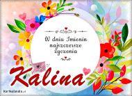 eKartki Imienne Damskie Kartka z życzeniami dla Kaliny,