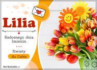 eKartki elektroniczne z tagiem: Kartka na imieniny Lilia - Radosnego dnia Imienin,