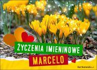 eKartki Imienne Damskie Marcela - Życzenia Imieninowe,