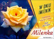 eKartki Imienne Damskie Milenka - Imieninowa róża dla Ciebie,