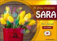 eKartki Imienne Damskie Moc Życzeń dla Sary,