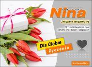 eKartki Imienne Damskie Nina - Życzenia Imieninowe,
