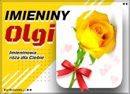 eKartki elektroniczne z tagiem: e-Kartka na imieniny Olga - Imieninowa róża dla Ciebie,