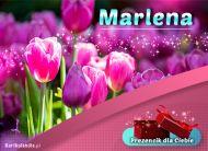 eKartki elektroniczne z tagiem: Kartka na imieniny Prezencik dla Marleny,