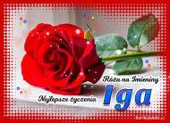 eKartki Imienne Damskie Róża na Imieniny dla Igi,