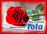 eKartki elektroniczne z tagiem: Kartka na imieniny Róża na Imieniny dla Toli,