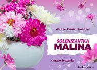 eKartki Imienne Damskie Solenizantka Malina,