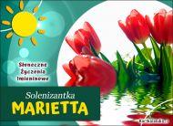 eKartki Imienne Damskie Słoneczne Życzenia dla Marietty,