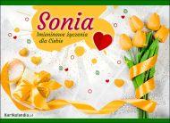 eKartki Imienne Damskie Sonia - Dziś Twoje święto!,