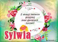 eKartki elektroniczne z tagiem: e-Kartka na imieniny Sylwia - Moc gorących życzeń!,
