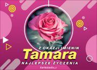 eKartki elektroniczne z tagiem: e-Kartka na imieniny Tamara - Z okazji Imienin...,