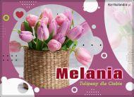 eKartki Imienne Damskie Tulipany dla Melanii,