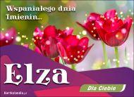 eKartki elektroniczne z tagiem: e-Kartka na imieniny Wspaniałego dnia Imienin Elza,
