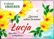 eKartki Imienne Damskie Życzenia usłane kwiatami dla Łucji,