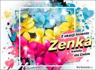 eKartki Imienne Damskie Zenka - Z okazji Imienin...,