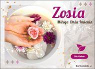 eKartki Imienne Damskie Zosia - Miłego Dnia Imienin!,