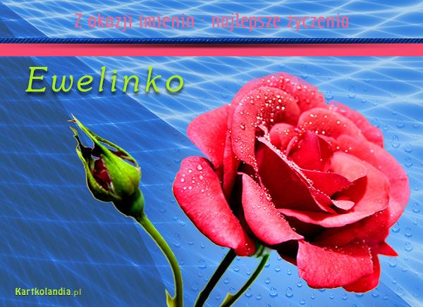 eKartki   Róża dla Ewelinki,