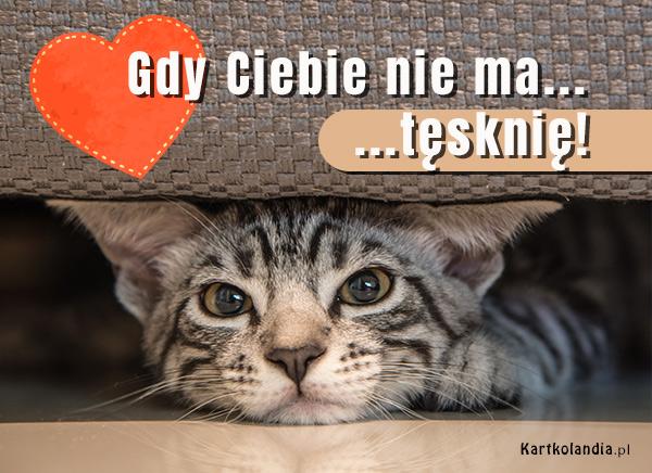 eKartki elektroniczne z tagiem: Kot Gdy Ciebie nie ma...,