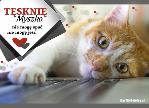 eKartki elektroniczne z tagiem: Kot Tęsknię Myszko,
