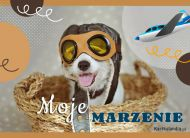 eKartki elektroniczne z tagiem: e-Kartka z psem Moje marzenie,