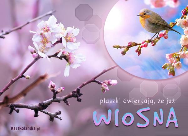 eKartki elektroniczne z tagiem: Wiosna Już wiosna,