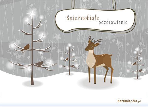 Śnieżnobiałe pozdrowienia