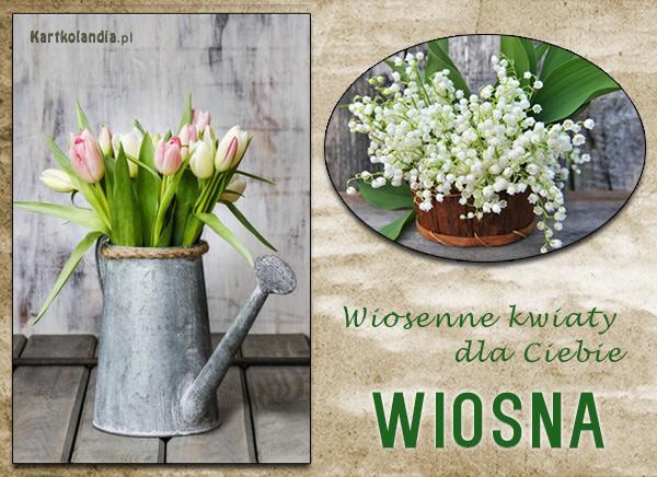 eKartki elektroniczne z tagiem: Wiosna Wiosenne kwiaty,