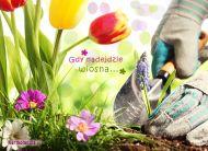 eKartki elektroniczne z tagiem: e-Kartki wiosenne Gdy nadejdzie wiosna,