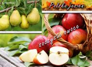 eKartki Cztery Pory Roku Jesienne owoce,