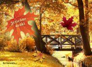 eKartki elektroniczne z tagiem: Kartki jesień Jesienny liść,
