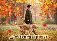 eKartki elektroniczne z tagiem: e-Kartki cztery pory roku Jesienny spacer,