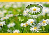eKartki elektroniczne z tagiem: e-Kartki wiosenne Przysz³a wiosna,
