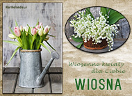 eKartki Cztery Pory Roku Wiosenne kwiaty,