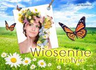 eKartki elektroniczne z tagiem: e-Kartki wiosenne Wiosenne motyle,