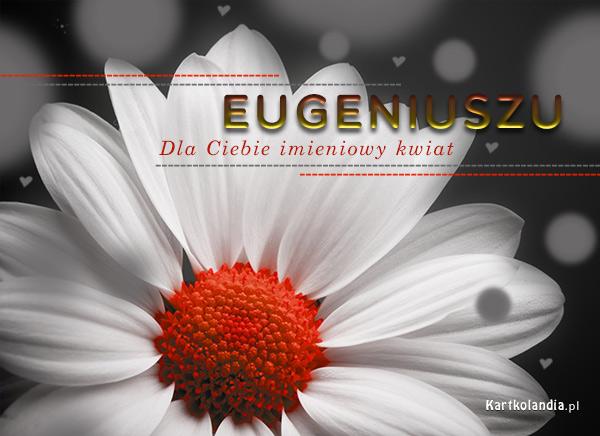 Dla Eugeniusza