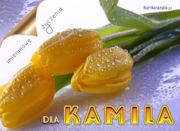 Dla Kamila