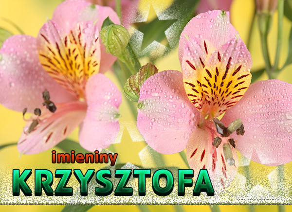 Imieniny Krzysztofa