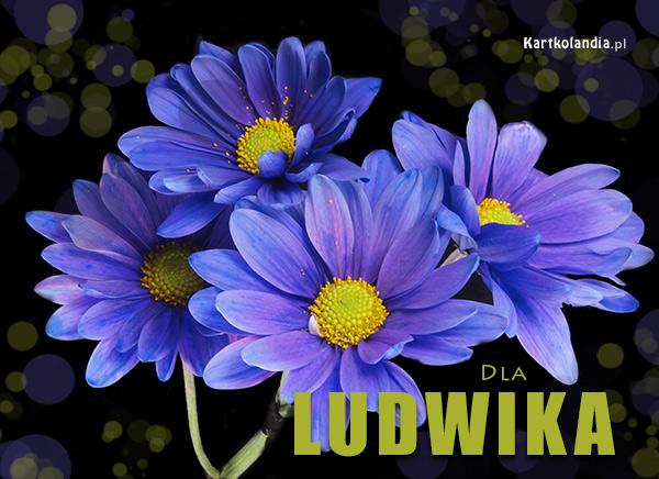 Kartka dla Ludwika
